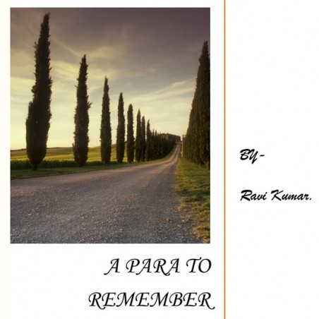A Para to Remember(eBook) by Ravi Kumar